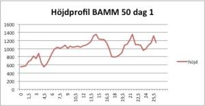 bamm50_dag1