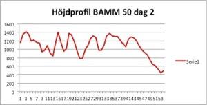 bamm50_dag2